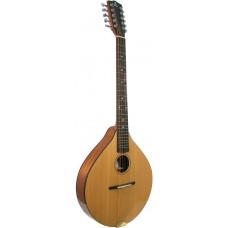 Ashbury Celtic Cittern, 10 string GR34016