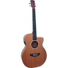 Ashbury Lindisfarne Tenor Guitar GDAE