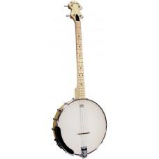 Ashbury Openback Tenor Banjo, Maple Rim