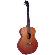 Ashbury Tenor Guitar Solid Sapele GDAE