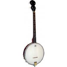 Blue Moon Openback Tenor Banjo