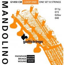 Galli Mandolin Strings, Phosphor Bronze Medium G1450 CM
